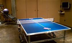 Ping Pong/Table Tennis table